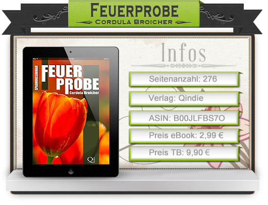 http://inflagrantibooks.blogspot.de/2014/09/feuerprobe-von-cordula-broicher.html