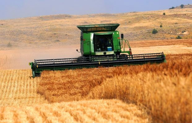 http://missoulian.com/news/state-and-regional/low-wheat-prices-stress-young-montana-farmers/article_b32a7d28-288c-11e4-b623-001a4bcf887a.html