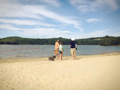 Eric le chien, Limousin, creuse, France, lac de vassiviere,