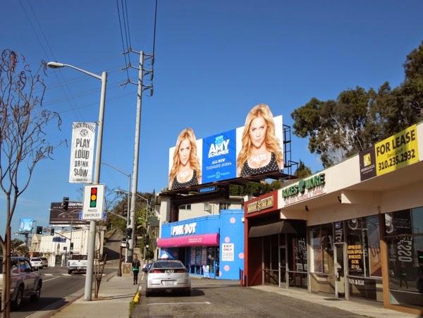 Inside Amy Schumer season 2 billboard