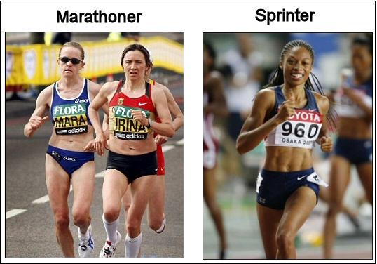 Sprinters Body Vs. Distance Runners Body Bhushan danani - demystifying ...