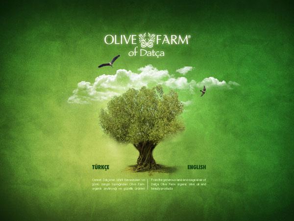 olive-farm-web-interface2