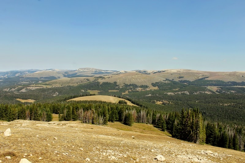 On the road to Medicine Wheel, Bighorn Mountains