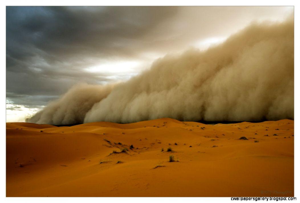 Sahara Desert Sandstorm Wallpaper Size 1170x791  AmazingPict