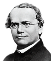 Gregor Mendel 189th Birthday