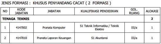 CPNS Pemkot Depok - Recruitment D3, S1, PGSD