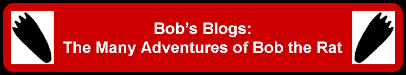 Bob's Blogs: The Many Adventures of Bob the Rat