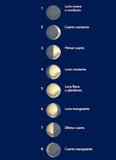 http://www.la-educacion.com/2012/03/las-fases-de-la-luna-bloque-5-tema1.html