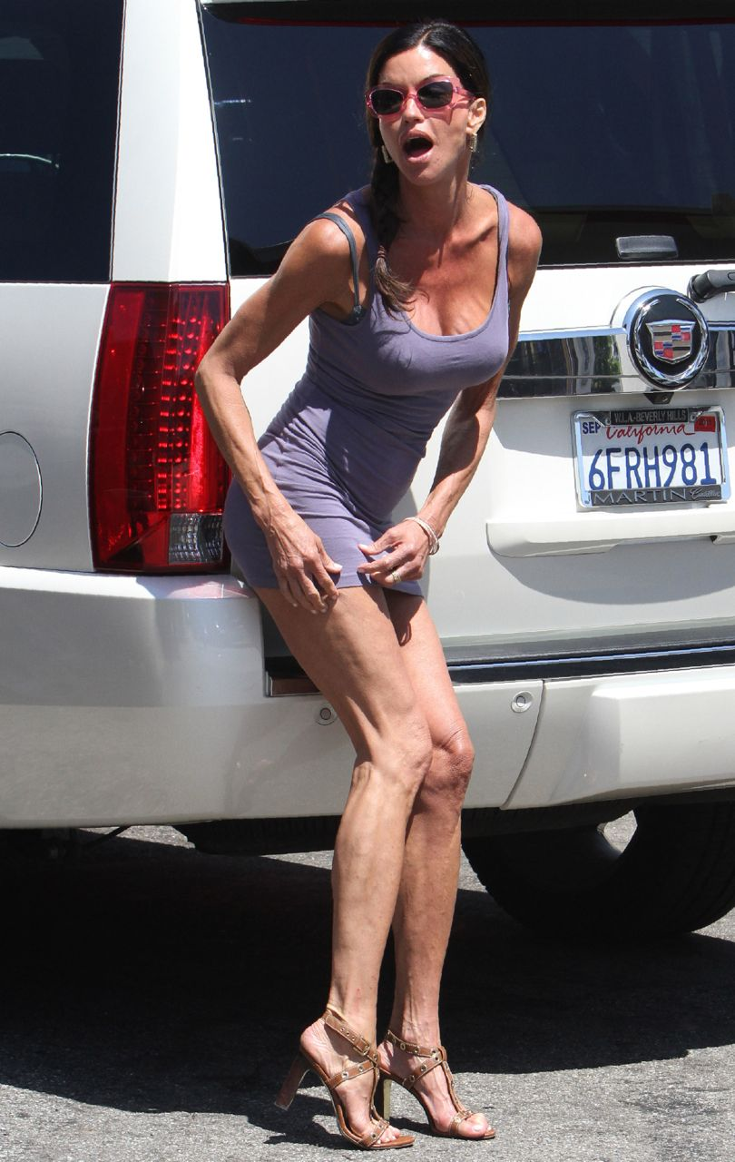 Janice dickenson upskirt