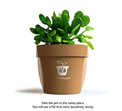 Innovative Gadgets That Lets You Know Your Plants Are Thirsty (13) 13