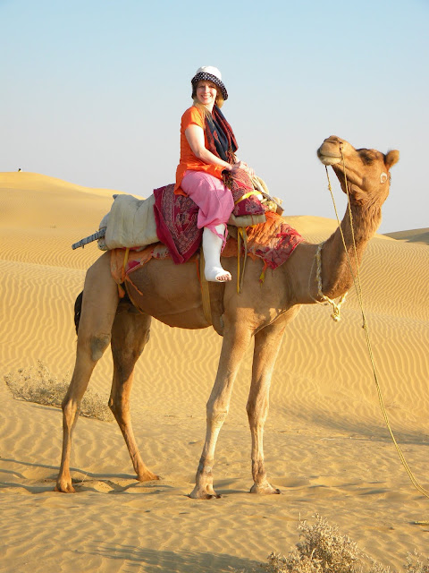 mammalia,animalia,cattle,camel,gif camel,gif ass,wilds,riding,dangerso,funny camel,camel riding