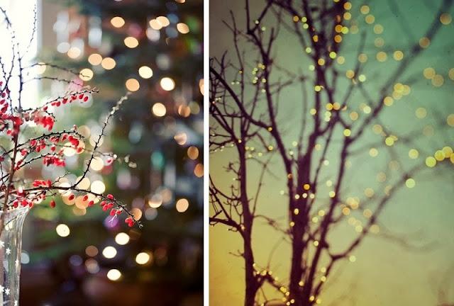 ramas con luces para navidad