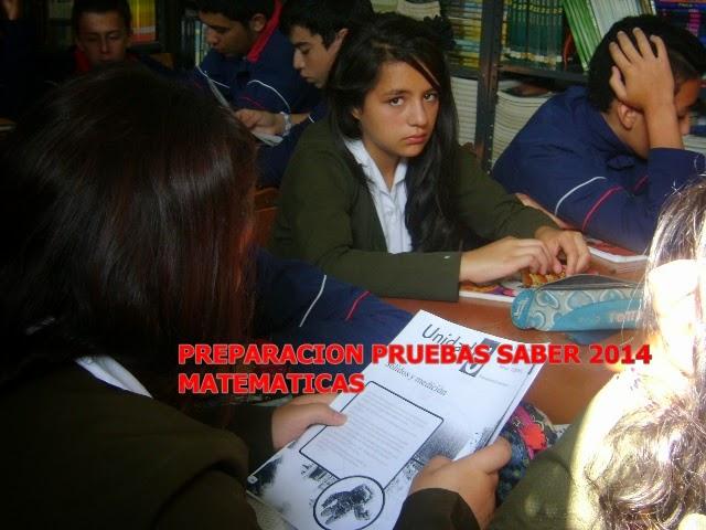 PRUEBAS SABER 9