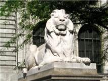 Welcome to Library Lions interviews. Raising a Roar for Libraries