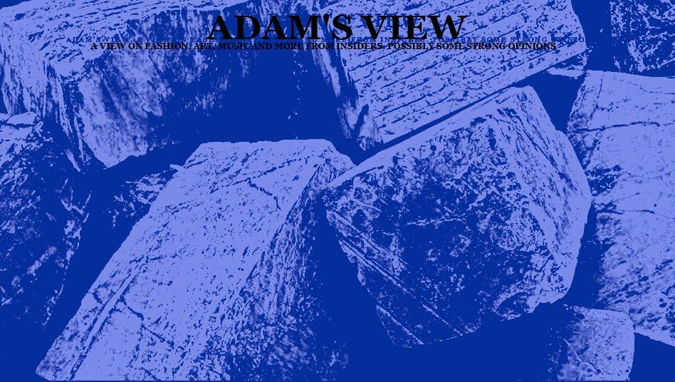 ADAM 'S VIEW