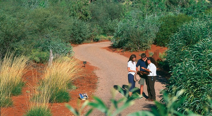 Part-Aboriginal tour guide and chef will take you on a pre-dusk bush walk, pointing out edible fruit.