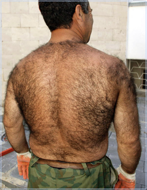 very hairy men - older hairy men - chasers