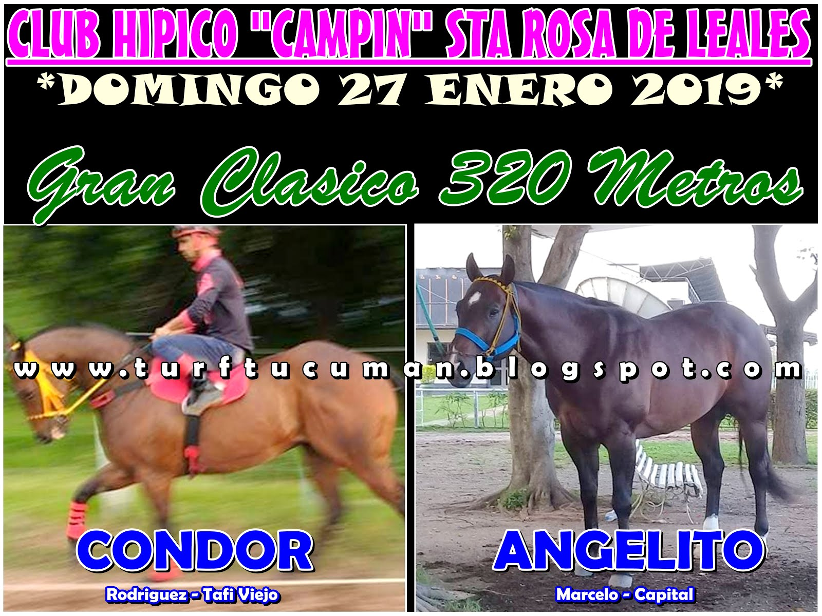 CONDOR VS ANGELITO