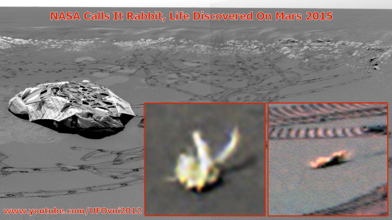 La NASA appelle Lapin, découvert vie sur Mars par la NASA rover Opportunity, 2015