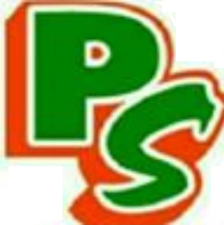 LOGO FOR PS