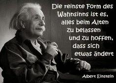 Sprüche Einstein Albert Einstein Zitate Jeder Ist Ein