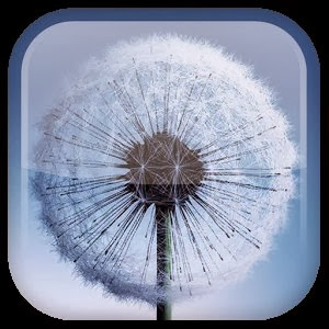 Galaxy S3/S4 Live Wallpaper v1.4.2 APK