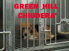 GREEN HILL CHIUDERA'
