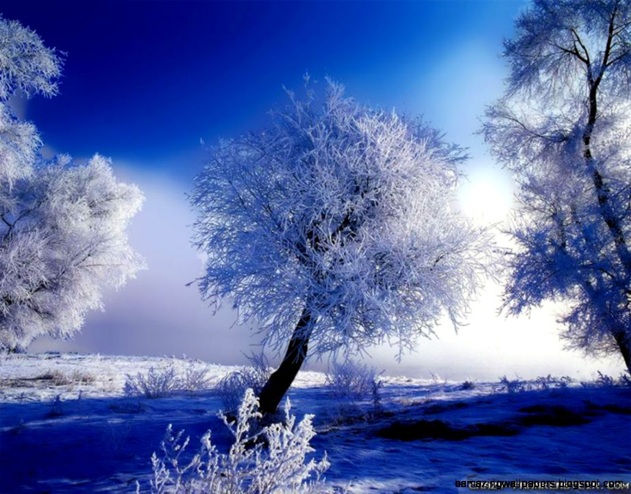 Winter Landscape wallpapers   Crazy Frankenstein
