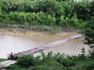 Ponte sobre o rio Cunani