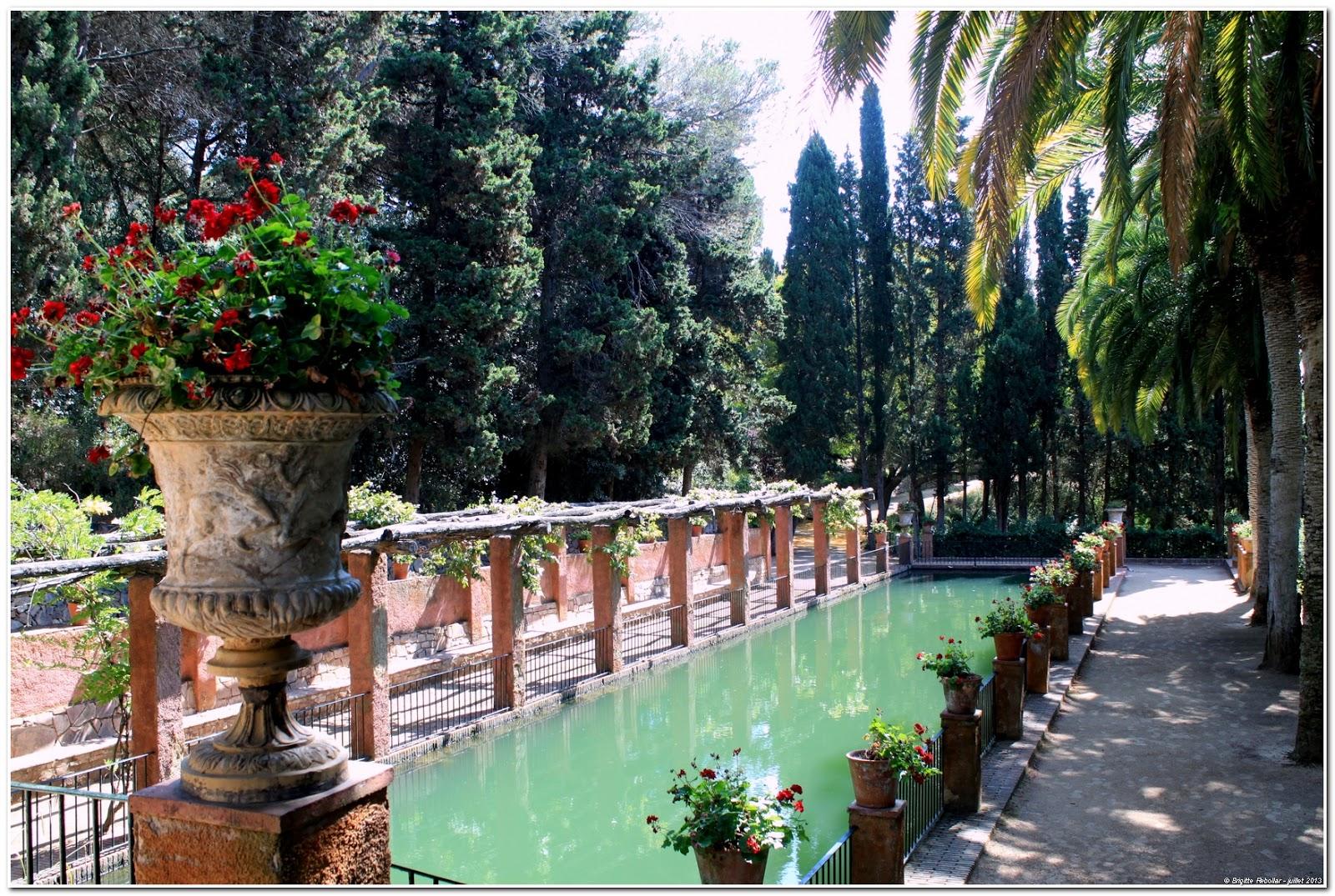 De moi vous jardin botanique pinya de rosa blanes for Jardin 5 juillet biskra