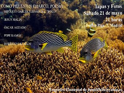 como-pez-en-el-agua-poesia-tapas-y-fotos-bolo-garcia-21-05-11