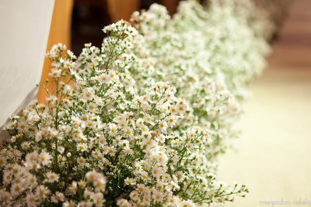 Flores da Decoração 2