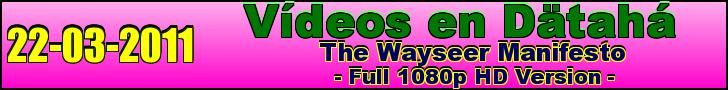 wayseer manifesto