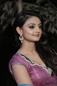 Nikita Narayan Photos at Tanu Monne Vellipoindi Audio-thumbnail-10