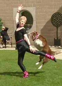 freestyle canino: