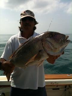 Denton, dentex. Pesca en barco. Fishing trips Marbella.