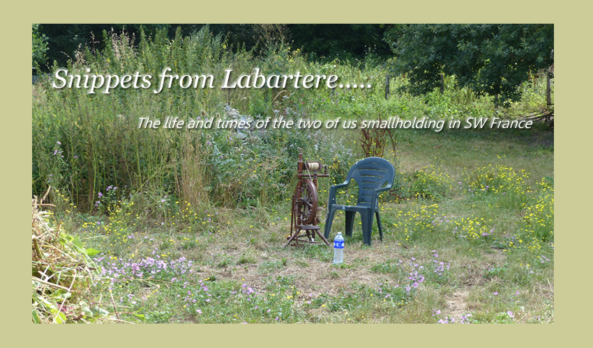 Snippets from Labartere