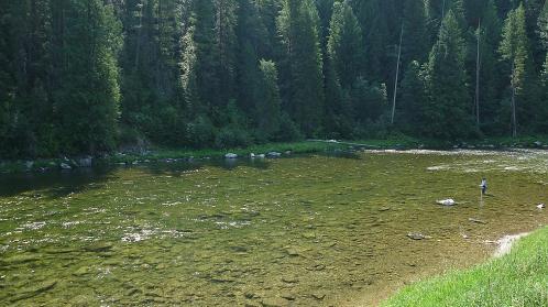 Walla fly fishers fishing kelly creek id with tyson kopfer for Fly fishing boise idaho