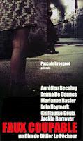Falso culpable (2011) online y gratis