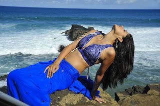 Tapsee Pannu in a Spicy Blue Pallu Less Saree Blue Choli Sizzling Pics