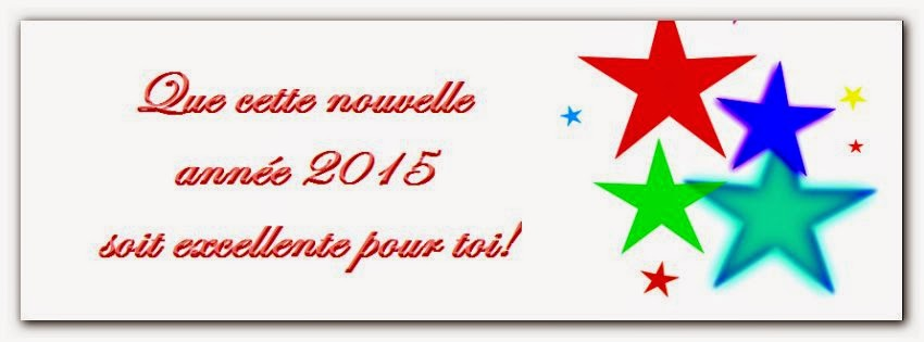 Sms pour souhaiter bonne année 2015