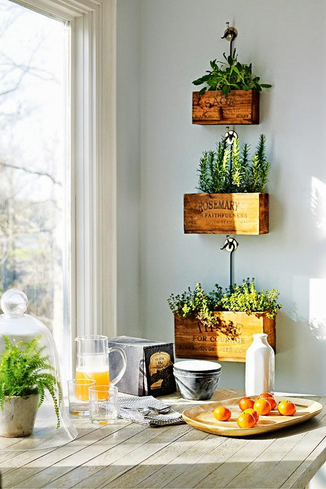 10 Maneiras Incr Veis De Usar Plantas De Interior