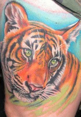 Fotos e imagens de Tattoos de Tigre
