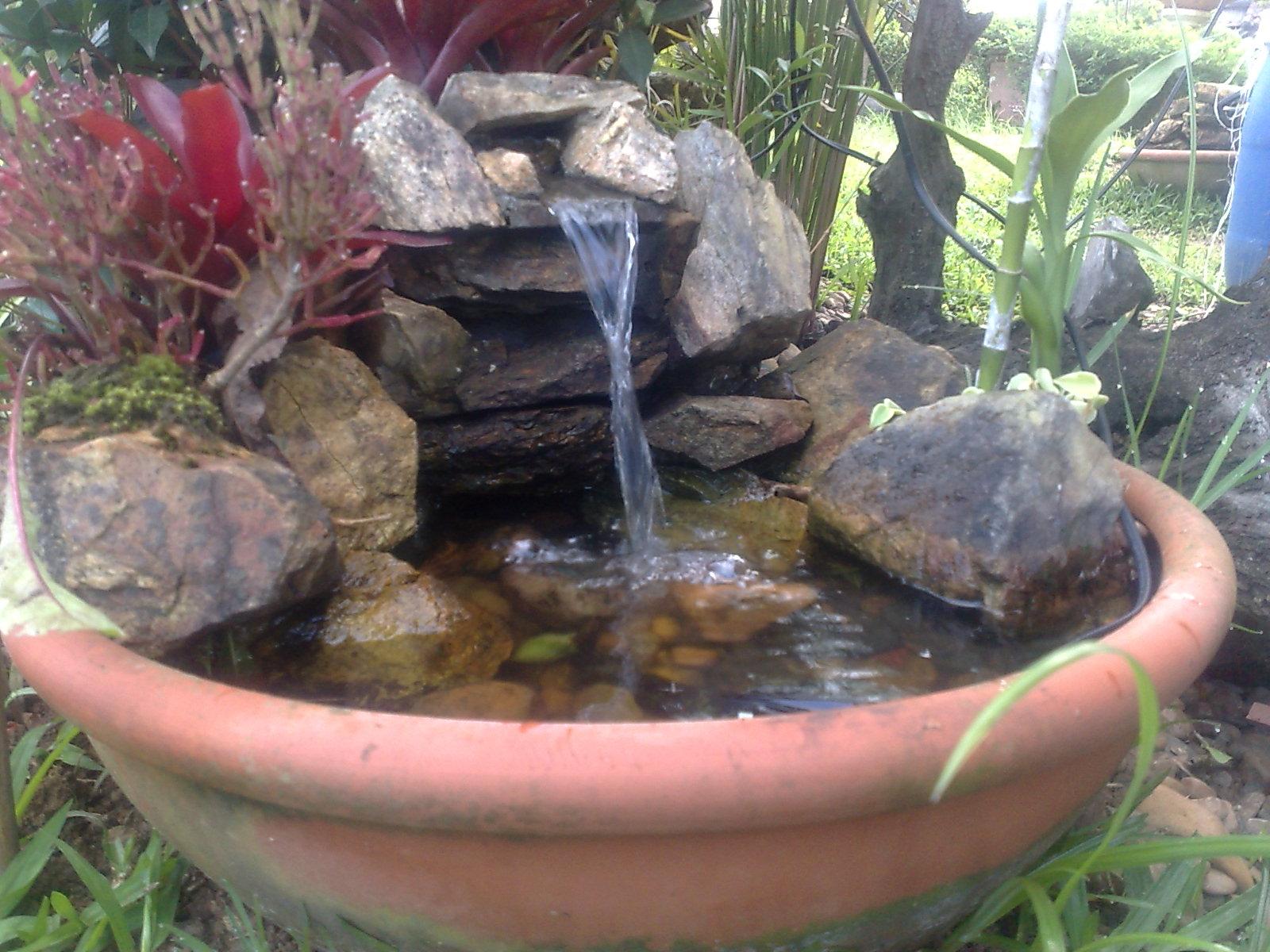 mini jardim acessorios:venda de plantas e acessorios para jardim