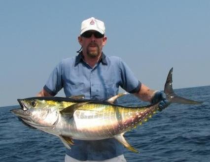 Tuna Yellowfin, di Yapen, Papua Barat.