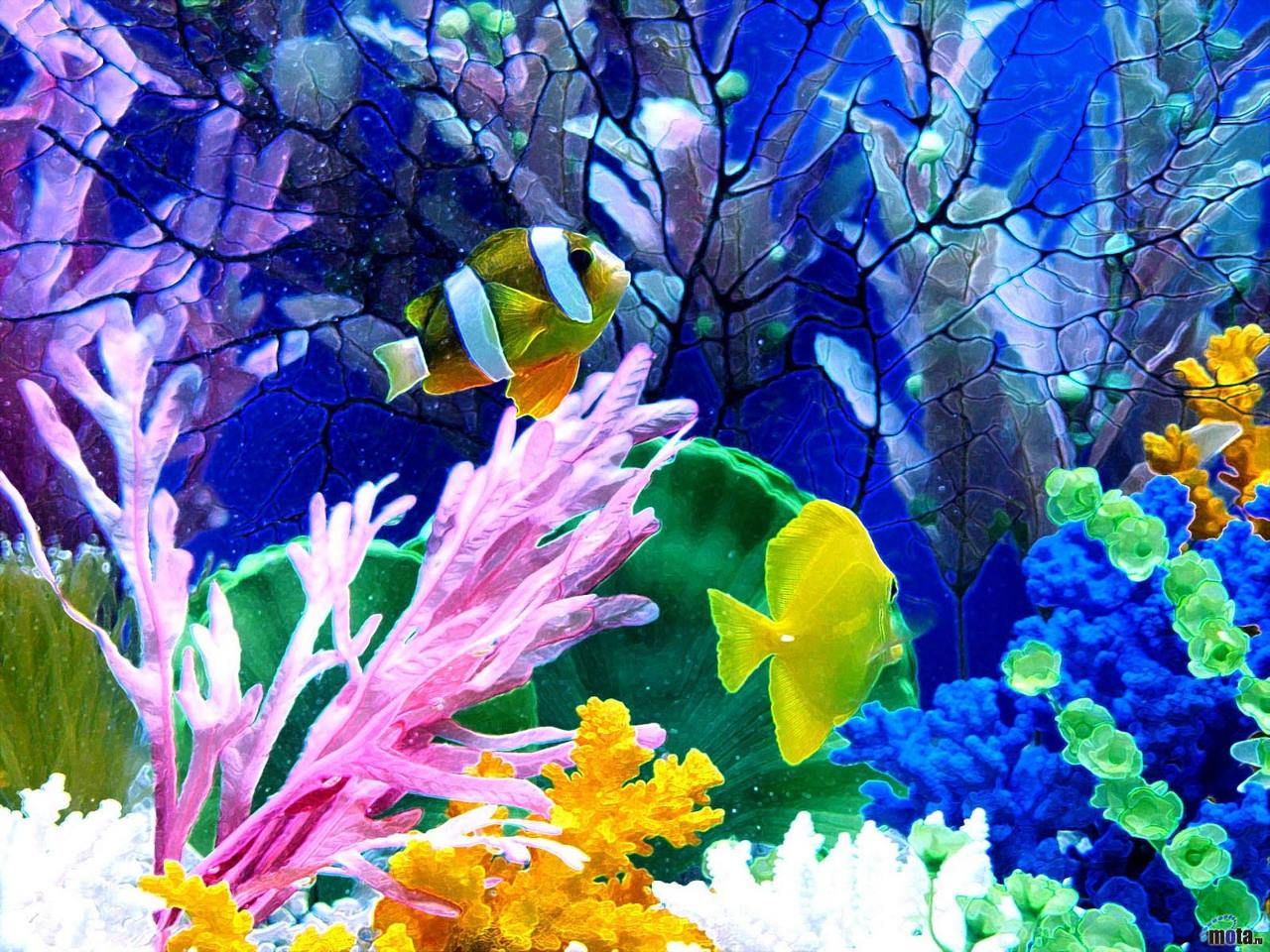 aquarium wallpaper hd - photo #2
