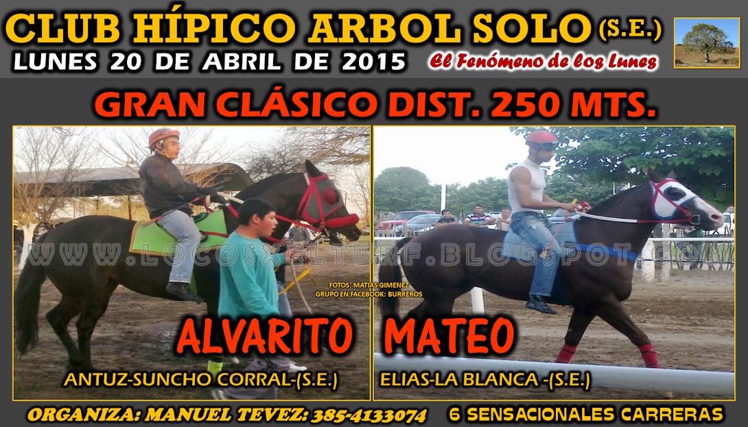 20-04-15-ARBOL SOLO-CLAS-3