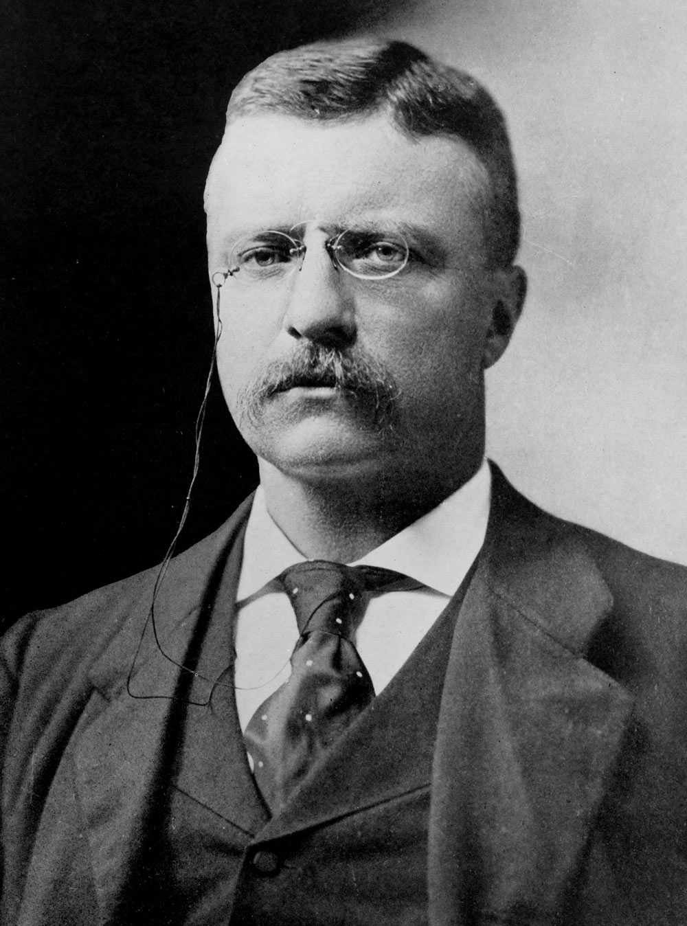 Blog not found Theodore Roosevelt