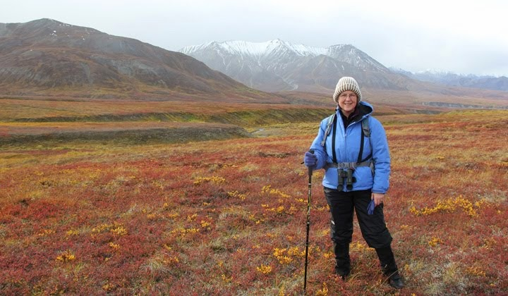 Discovery Hike in Denali National Park and Preserve, Alaska--2012