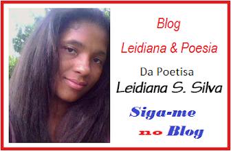 Seja um seguidor do Blog